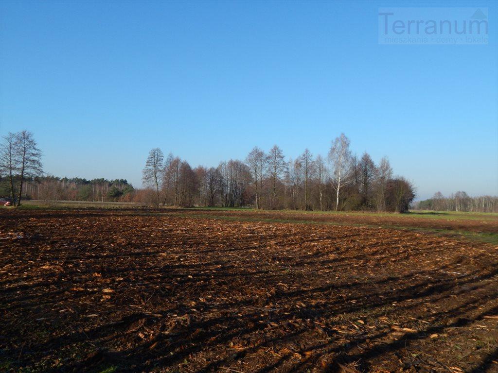 Działka rolna na sprzedaż Pogorzelec  1400m2 Foto 4