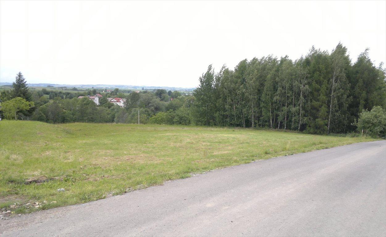 Działka budowlana na sprzedaż Niechobrz  7400m2 Foto 2