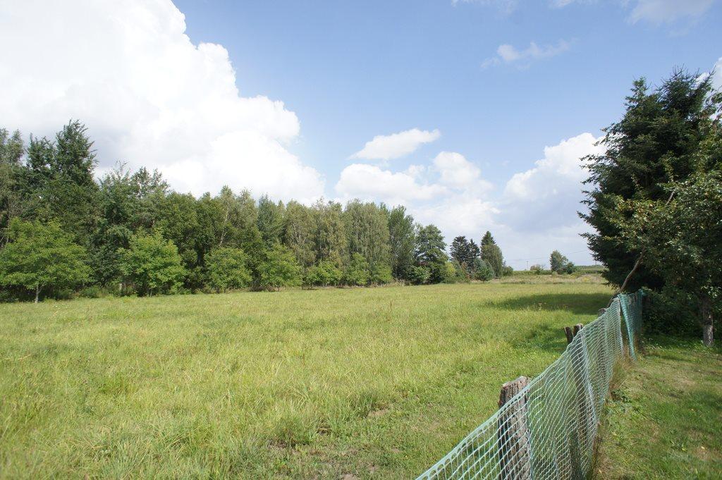 Działka rolna pod dzierżawę Krzywice  8385m2 Foto 3