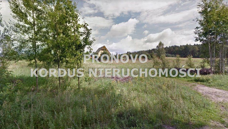 Działka budowlana na sprzedaż Lubieszewo  1154m2 Foto 4