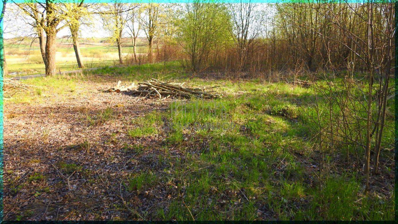 Działka rolna na sprzedaż Gołogóra  3004m2 Foto 8