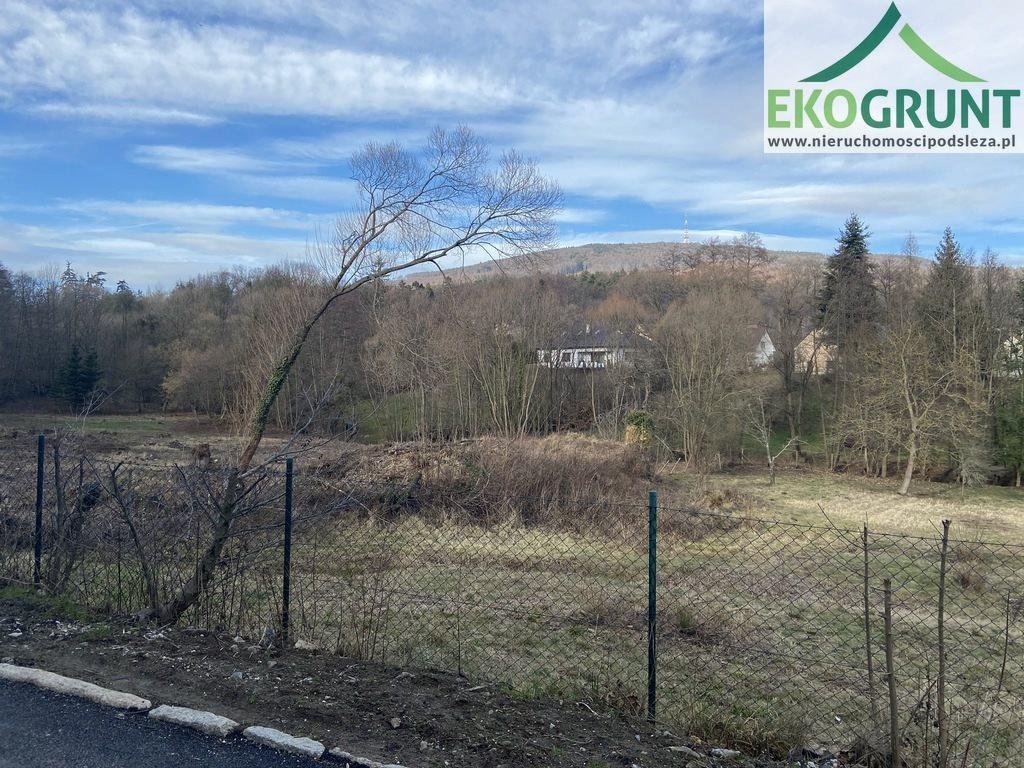Działka budowlana na sprzedaż Sulistrowiczki, Parkowa  3800m2 Foto 1