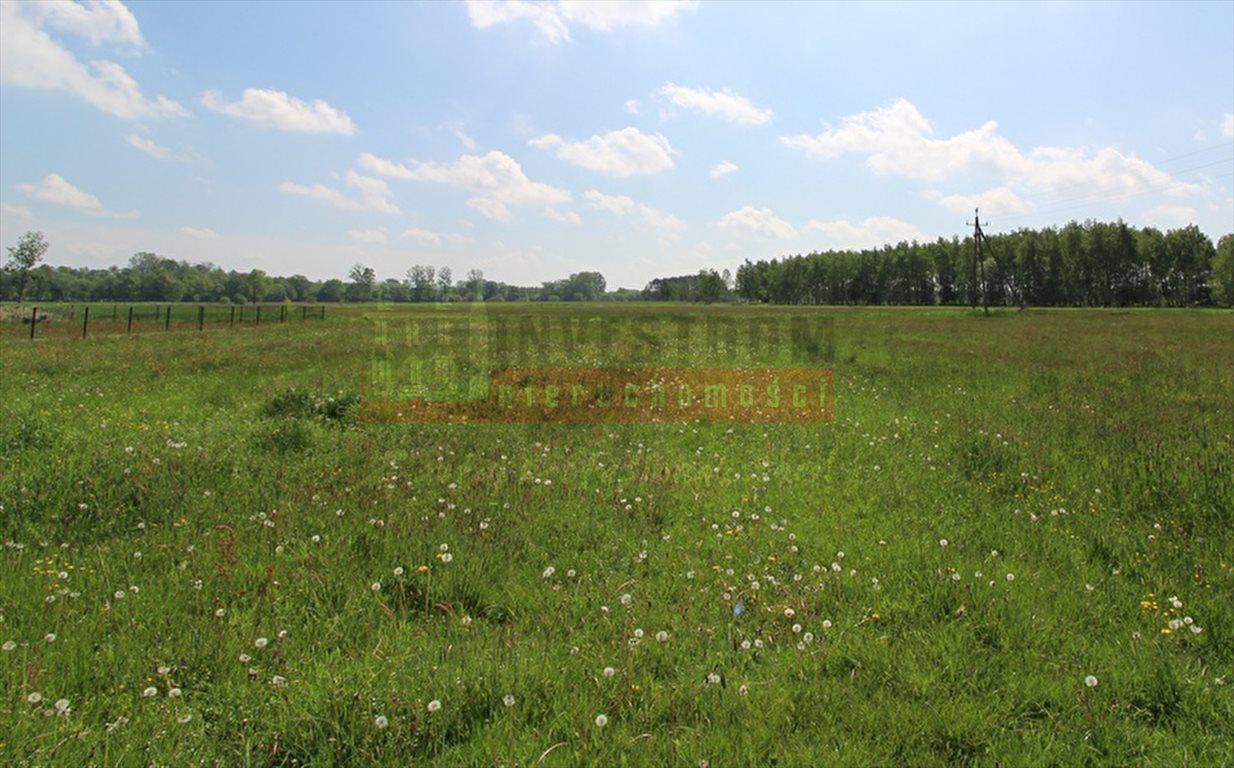 Działka inna na sprzedaż Kolanowice  1194m2 Foto 1