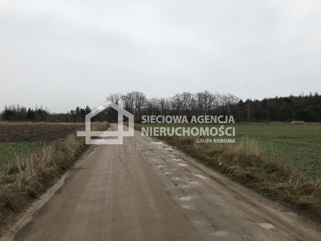 Działka rolna na sprzedaż Sasino  12100m2 Foto 6