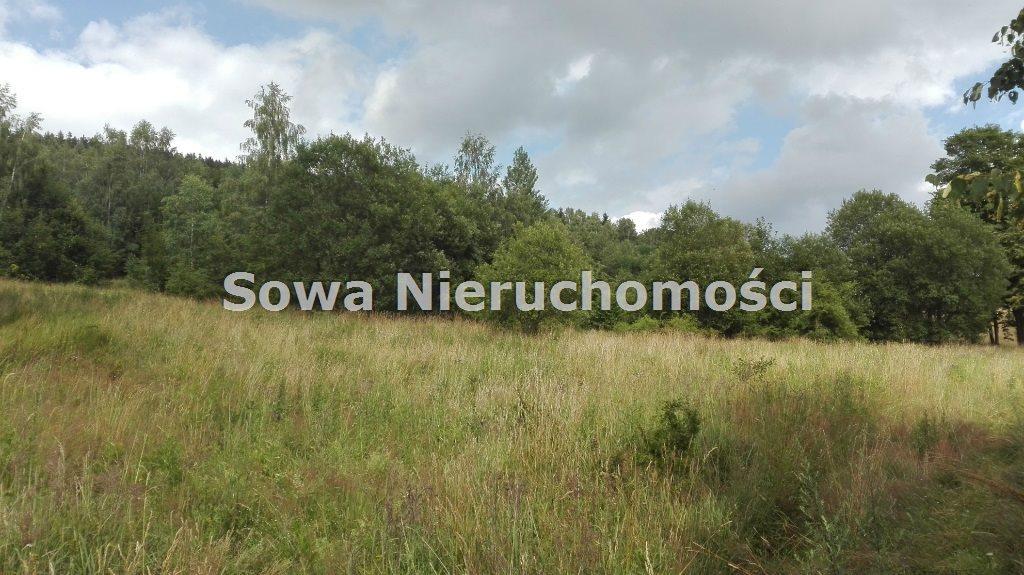 Działka inna na sprzedaż Mieroszów, okolice Mieroszowa  14209m2 Foto 8
