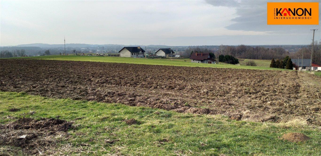 Działka rolna na sprzedaż Roztropice  3001m2 Foto 8