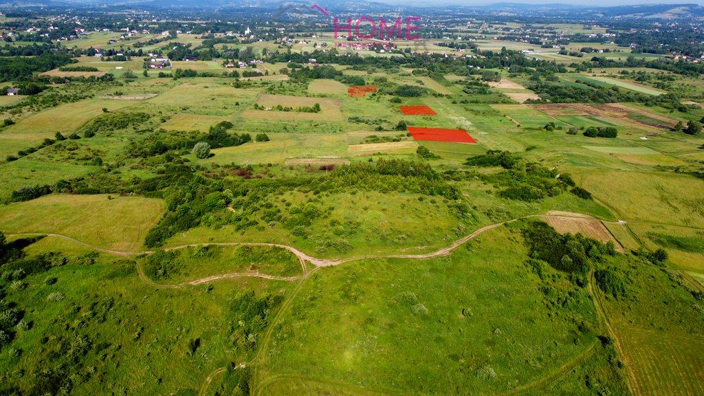 Działka rolna na sprzedaż Lipinki  13788m2 Foto 4