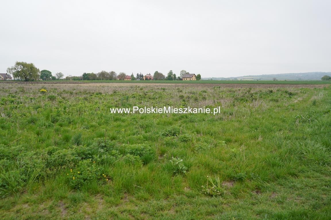 Działka rolna na sprzedaż Przemyśl, Krówniki  5500m2 Foto 7