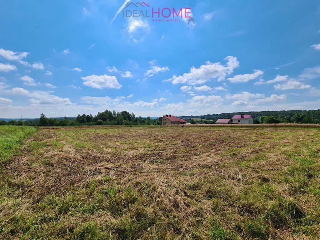 Działka rolna na sprzedaż Hermanowa  5100m2 Foto 2