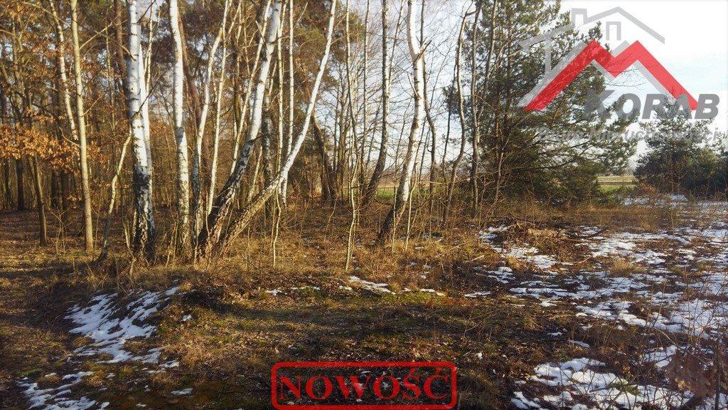 Działka budowlana na sprzedaż Wola Pasikońska, Wola Pasikońska  2630m2 Foto 7