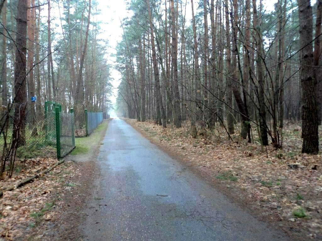 Działka budowlana na sprzedaż Grodzisk Mazowiecki, Grzymek  2000m2 Foto 4