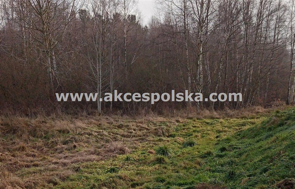 Działka budowlana na sprzedaż Kartuzy, Kiełpino, Energetyków  3761m2 Foto 6