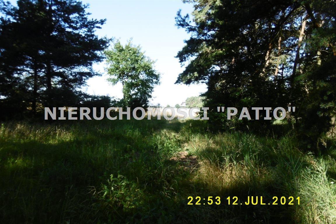 Działka leśna na sprzedaż Kórnik, Radzewo, Dworzyska  4700m2 Foto 3