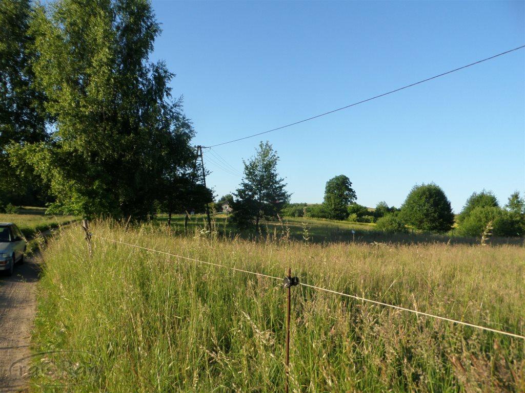 Działka rolna na sprzedaż Stare Kawkowo  3206m2 Foto 5