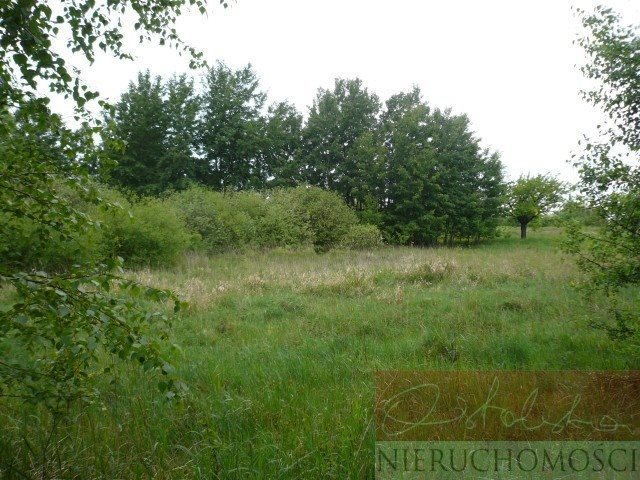 Działka siedliskowa na sprzedaż Nienawiszcz  4409m2 Foto 1