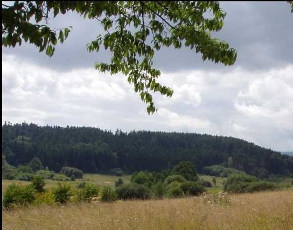 Działka budowlana na sprzedaż Stary Wielisław, Stary Wielisław, Polanica Zdrój  47159m2 Foto 4