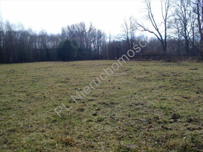 Działka rolna na sprzedaż Mszczonów  20000m2 Foto 5