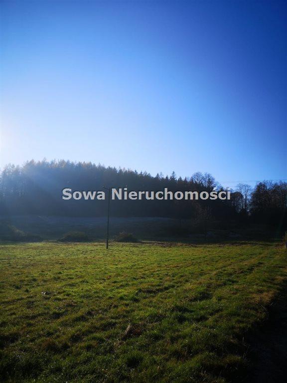 Działka inna na sprzedaż Staniszów  999m2 Foto 3