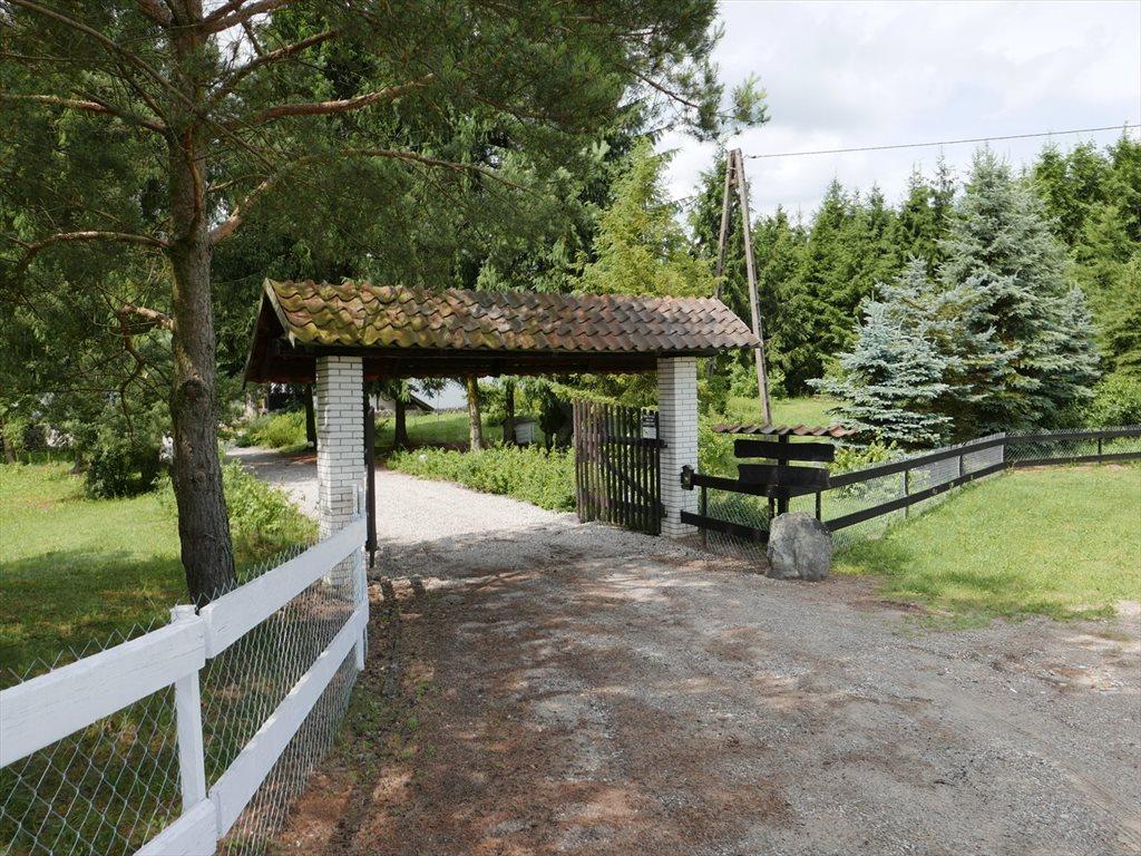 Dom na sprzedaż Stękiny  700m2 Foto 6