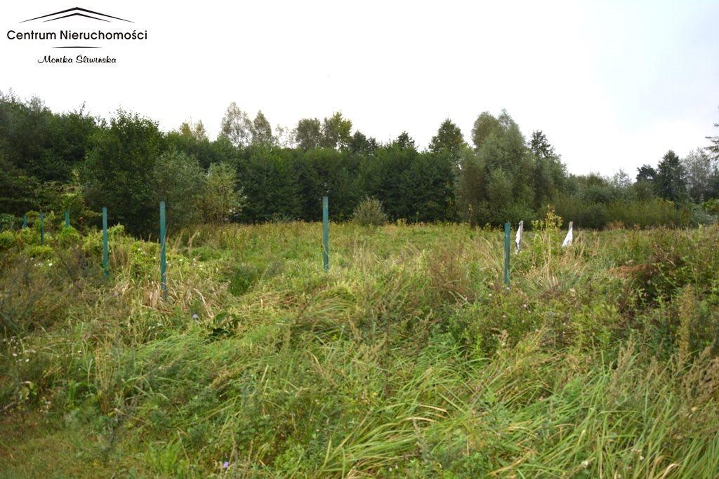 Działka rolna na sprzedaż Małe Łunawy  5000m2 Foto 2