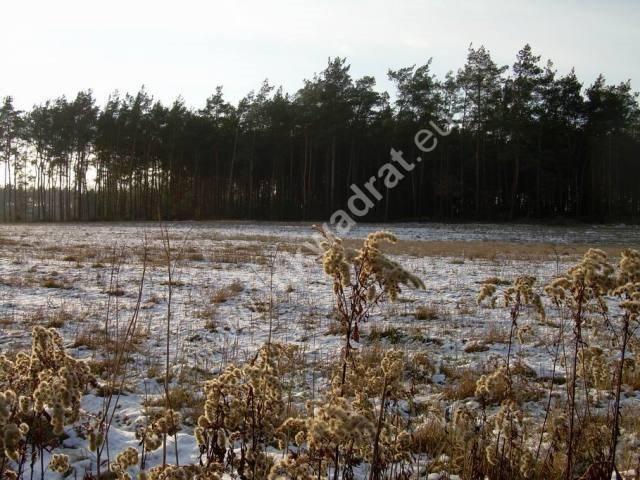 Działka rolna na sprzedaż Stanisławów  3000m2 Foto 9
