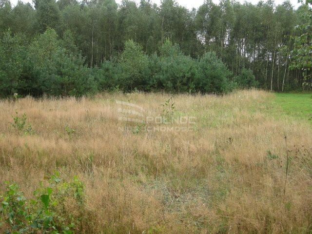 Działka rolna na sprzedaż Kudrycze  3151m2 Foto 2