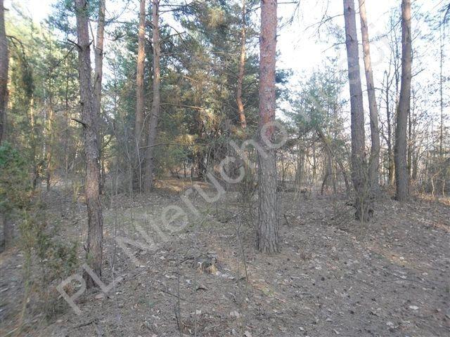 Działka rolna na sprzedaż Stanisławów  21520m2 Foto 1
