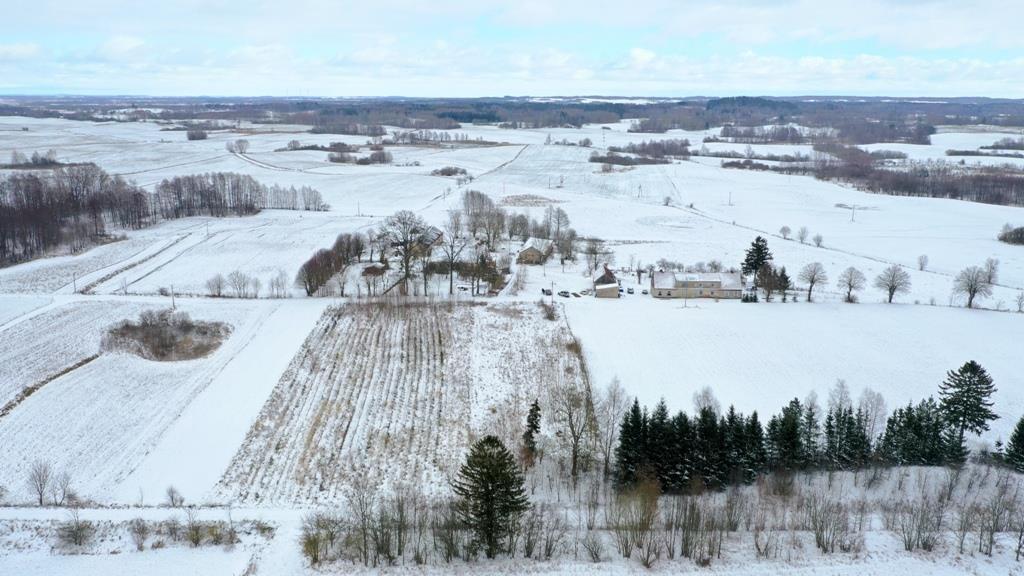 Działka rolna na sprzedaż Wyszowate, Wyszowate  3000m2 Foto 8