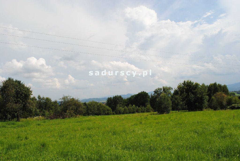 Działka leśna na sprzedaż Aleksandrów  50000m2 Foto 3