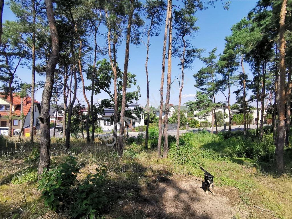 Działka leśna na sprzedaż Legionowo  1808m2 Foto 1