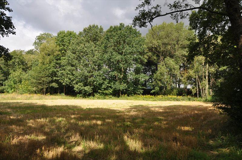 Działka rolna na sprzedaż Sulistrowice  4100m2 Foto 13
