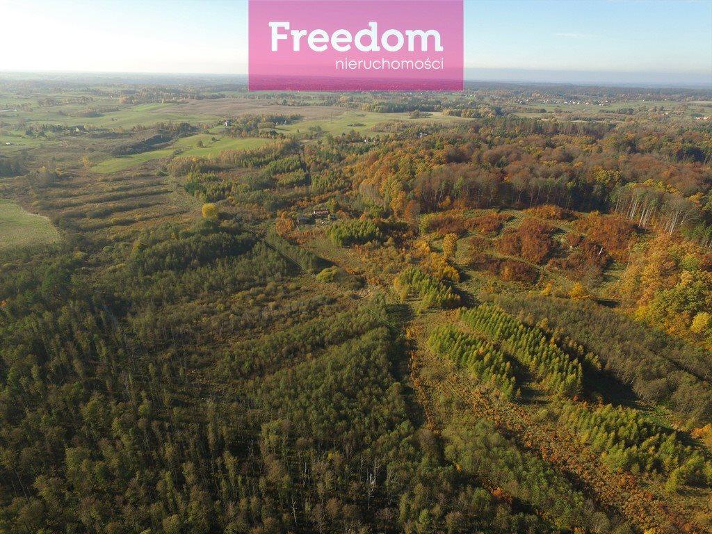 Działka leśna na sprzedaż Sobno  142300m2 Foto 4