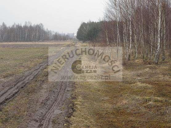 Działka budowlana na sprzedaż Olesin  1148m2 Foto 3