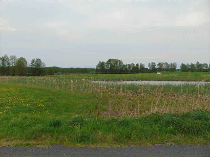 Działka rolna na sprzedaż Kępa Mała  15000m2 Foto 4