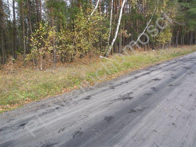 Działka leśna na sprzedaż Wólka Wybraniecka  12500m2 Foto 8