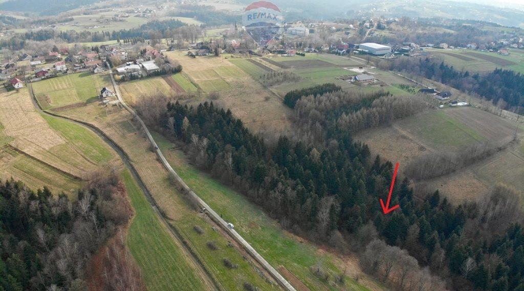 Działka rolna na sprzedaż Mystków  4000m2 Foto 3