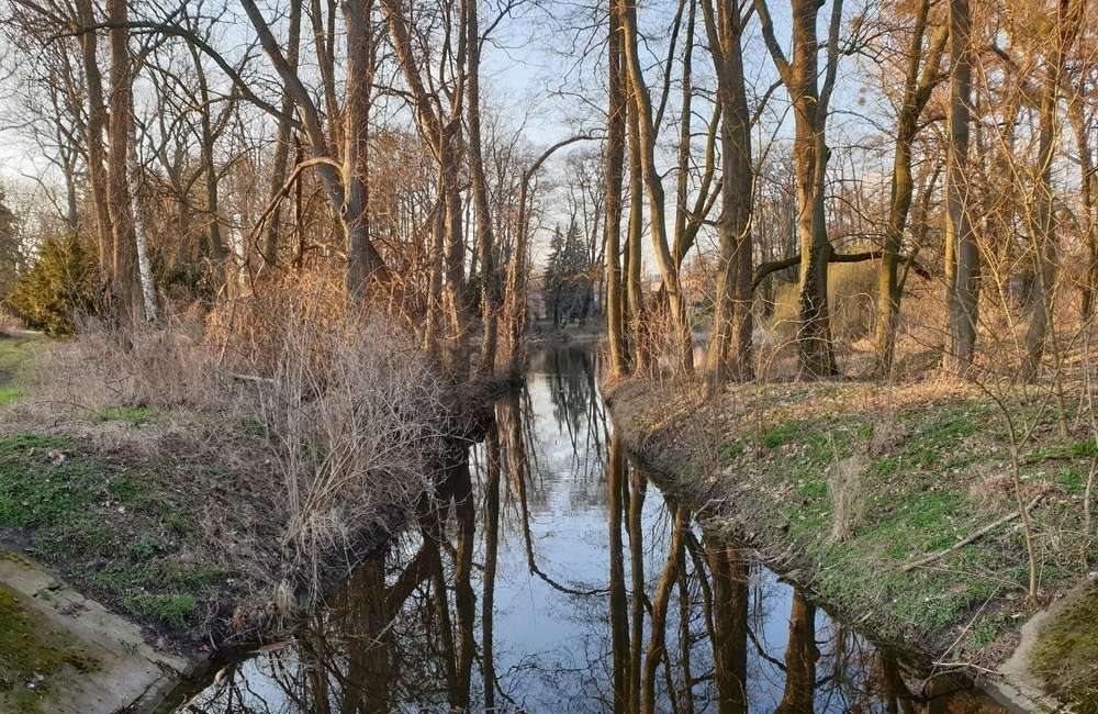 Dom na sprzedaż Manieczki, parkowa  514m2 Foto 10