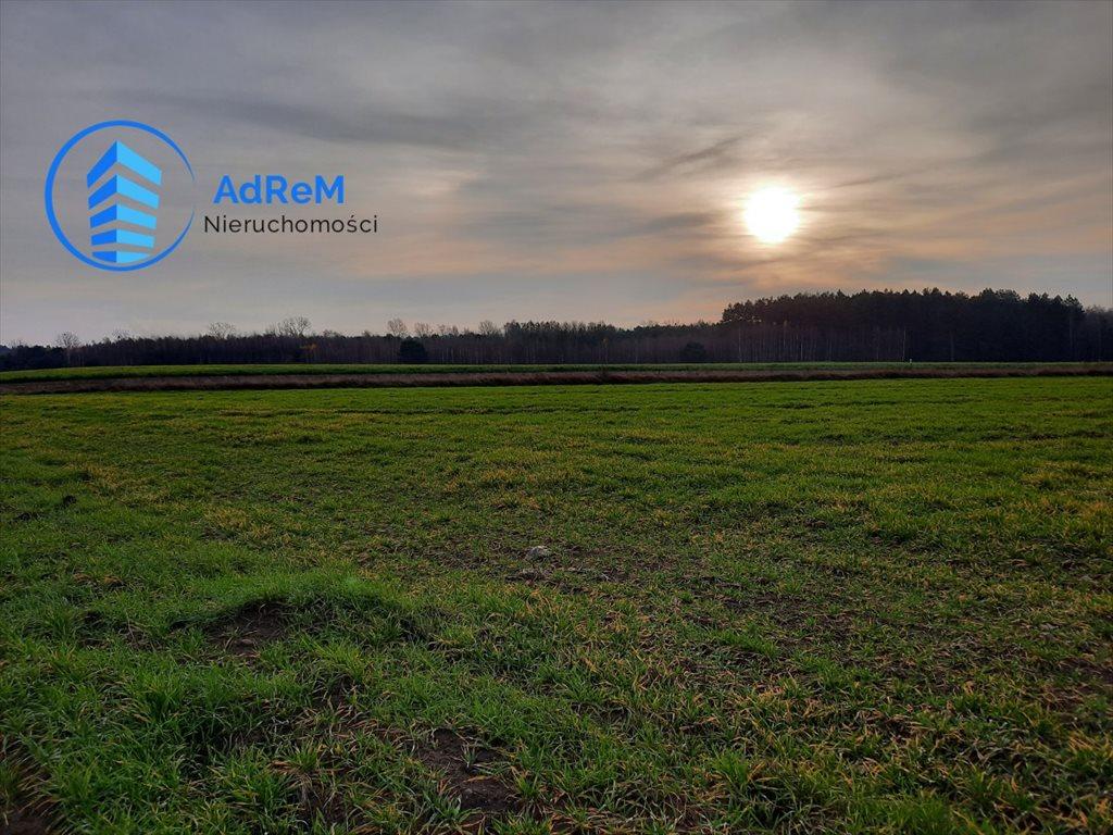 Działka rolna na sprzedaż Pomigacze  3010m2 Foto 1