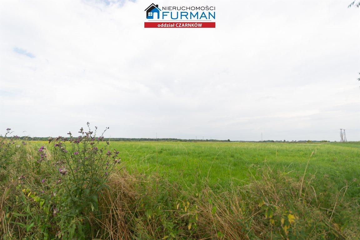 Działka rolna na sprzedaż Kuźnica Czarnkowska  7100m2 Foto 1