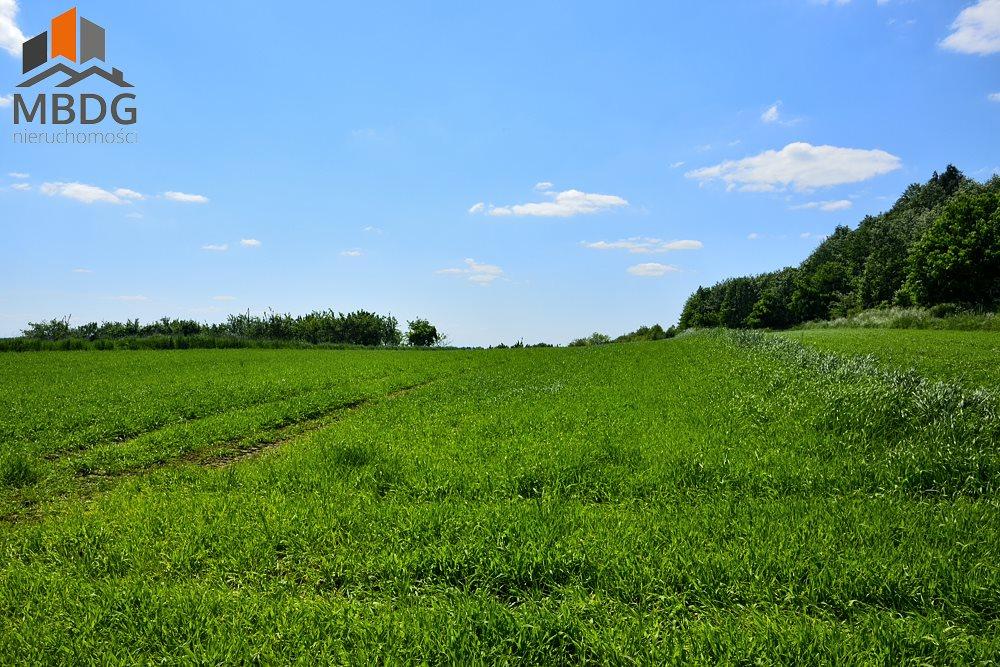 Działka rolna na sprzedaż Czułów  16800m2 Foto 5