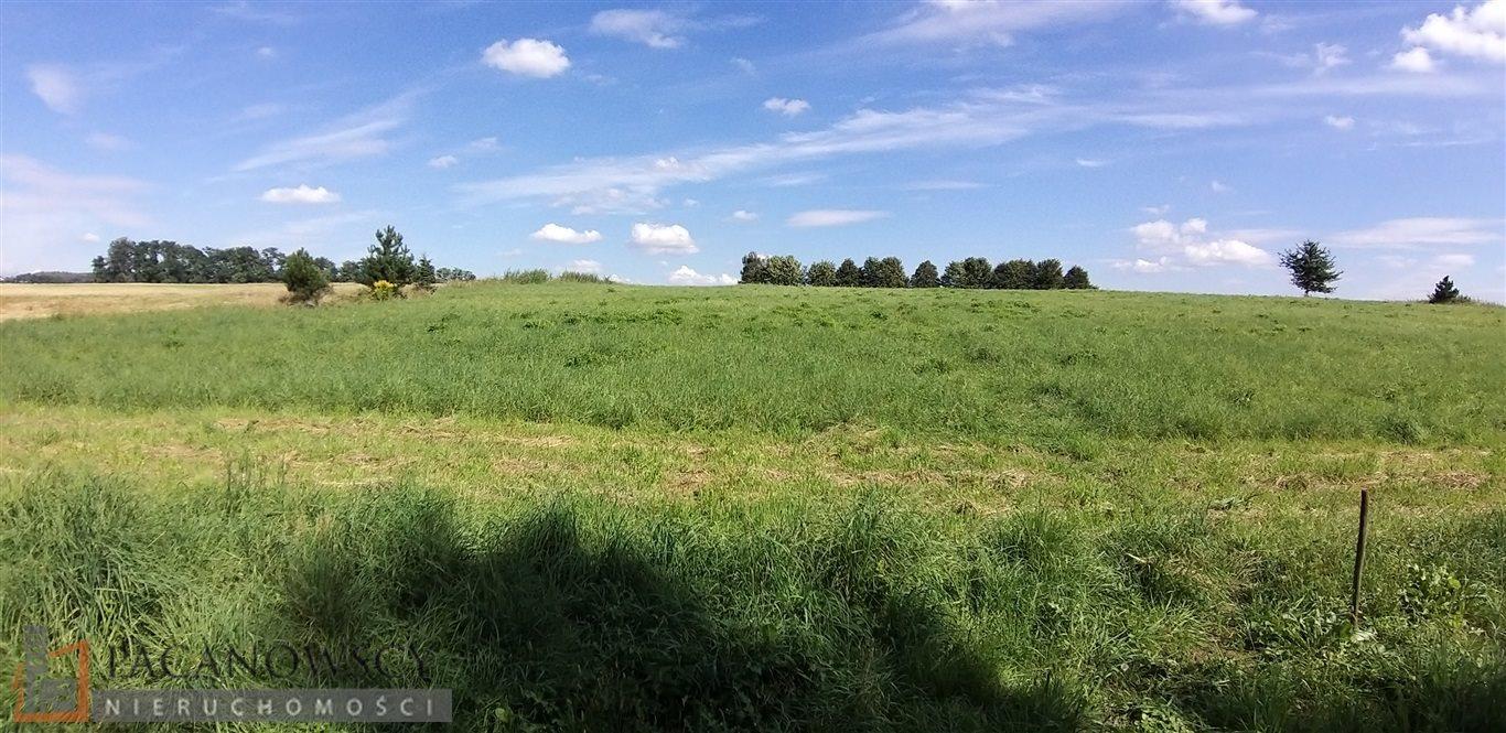 Działka rolna na sprzedaż Bolechowice  3000m2 Foto 3