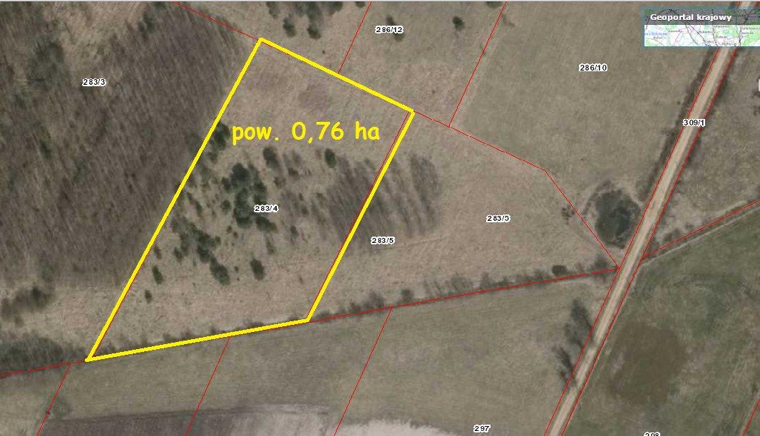 Działka rolna na sprzedaż Starzyna  7600m2 Foto 4