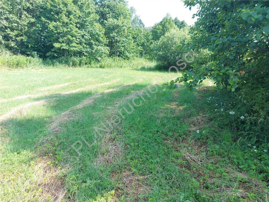Działka rolna na sprzedaż Ruda  4516m2 Foto 11