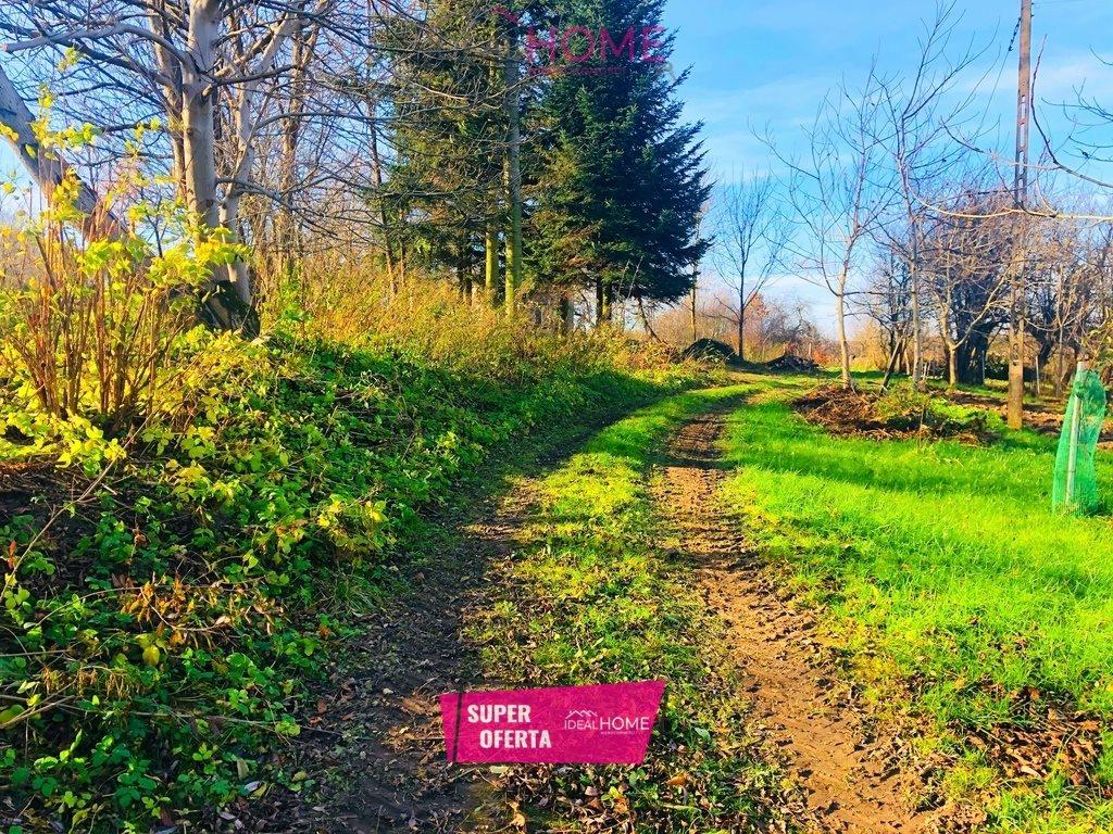 Działka leśna na sprzedaż Siedleczka  2700m2 Foto 1