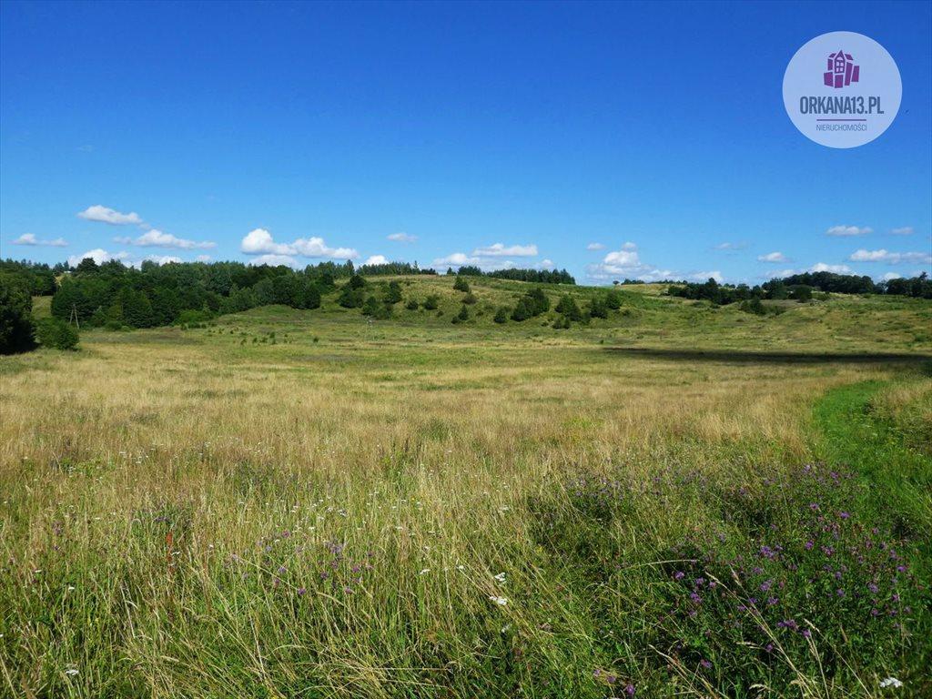 Działka rolna na sprzedaż Orzechowo, gmina Dobre Miasto  17399m2 Foto 1