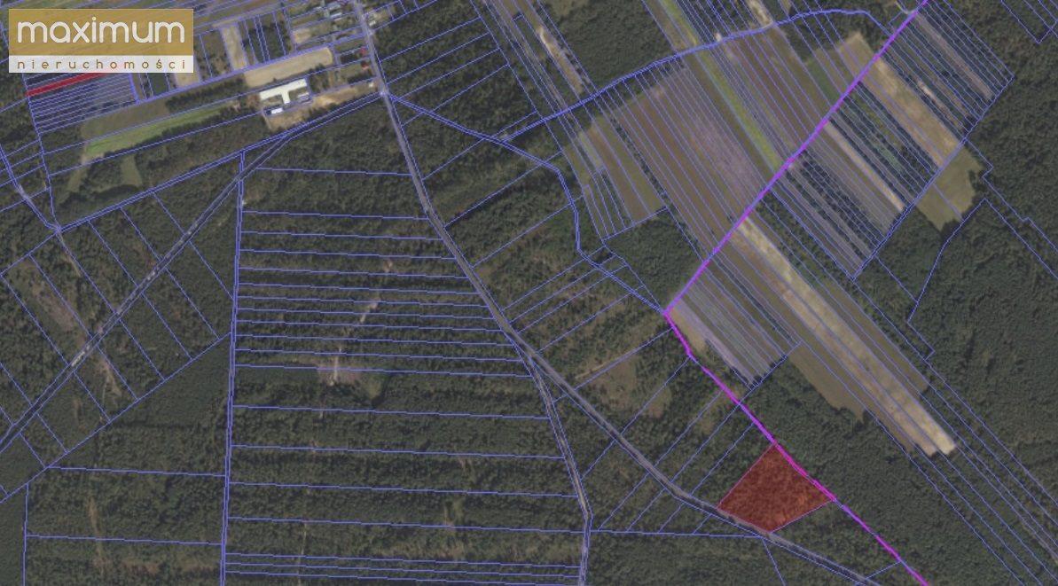 Działka leśna na sprzedaż Tereszpol-Kukiełki  56800m2 Foto 6