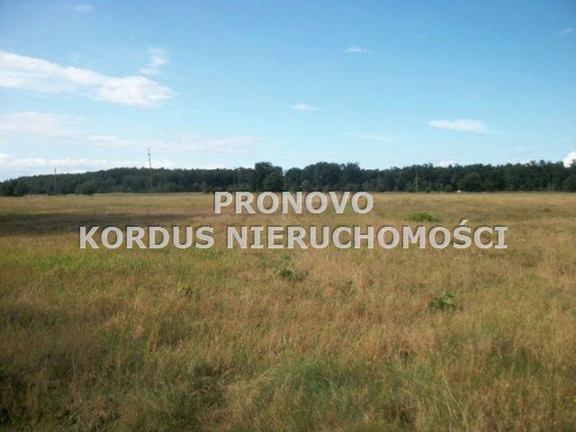 Działka leśna na sprzedaż Wojtkowa, Trzcianiec  1958400m2 Foto 1