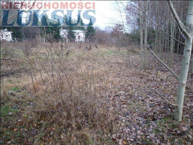 Działka rolna na sprzedaż Kuleszówka, Kuleszówka  3000m2 Foto 4