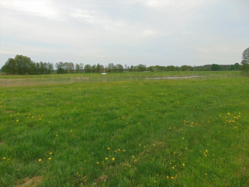 Działka rolna na sprzedaż Kępa Mała  15000m2 Foto 2