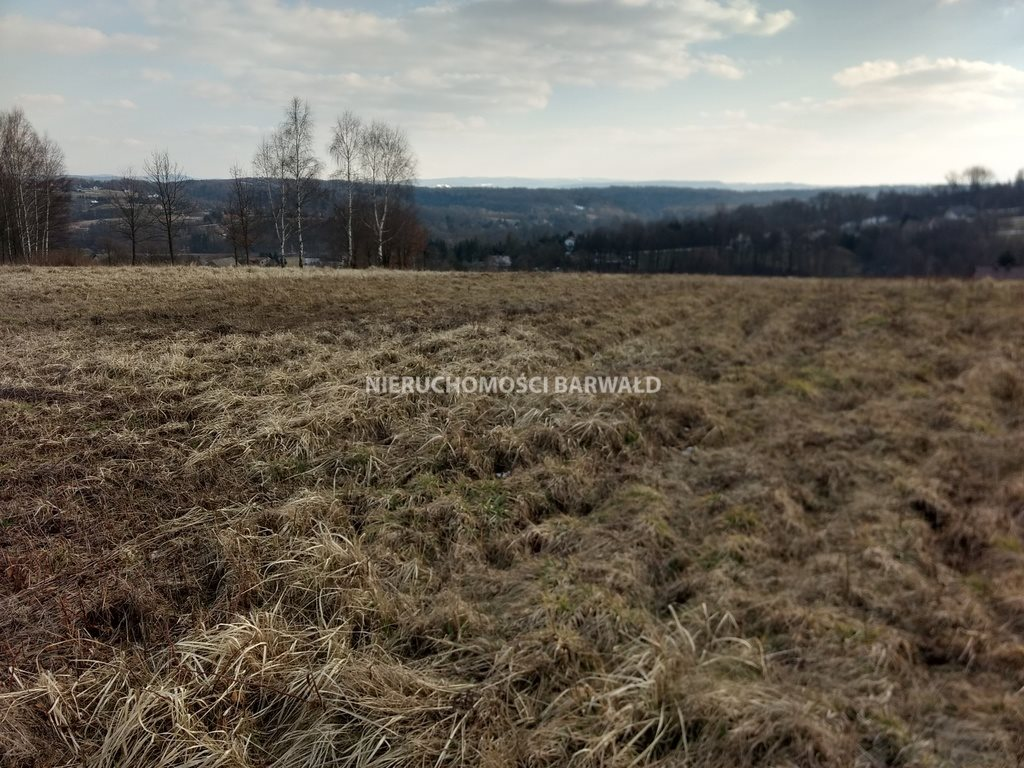 Działka rolna na sprzedaż Podolany  3177m2 Foto 6